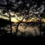 Trail running at dawn