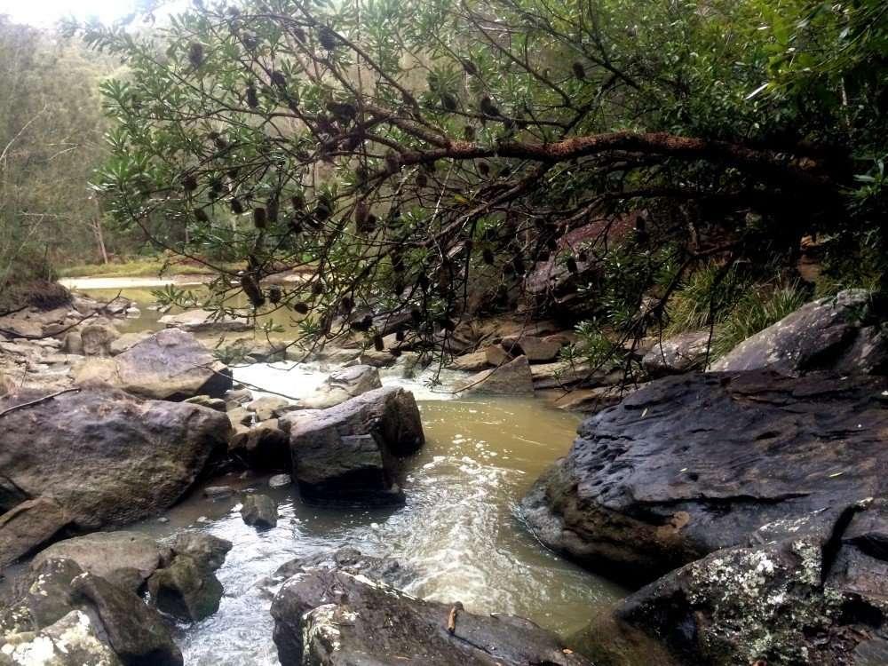 Crossing Cowan Creek, Warrimoo Track