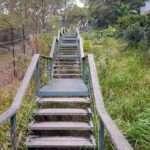 Sydney Urban Workouts – Stairs around Mosman