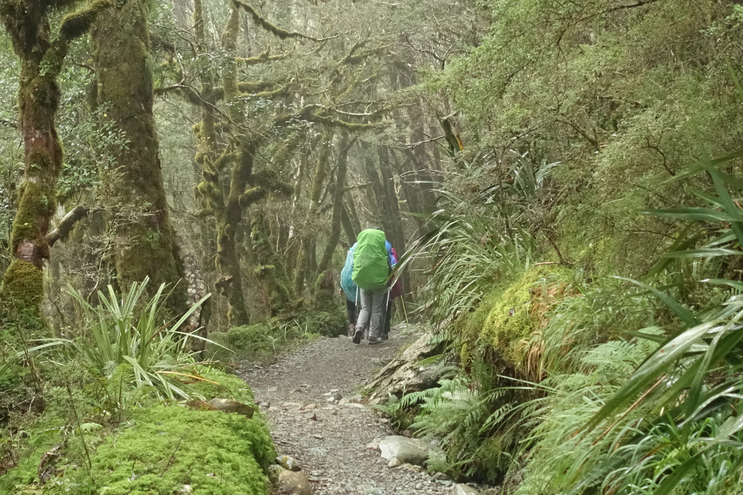 You are currently viewing The Routeburn Track