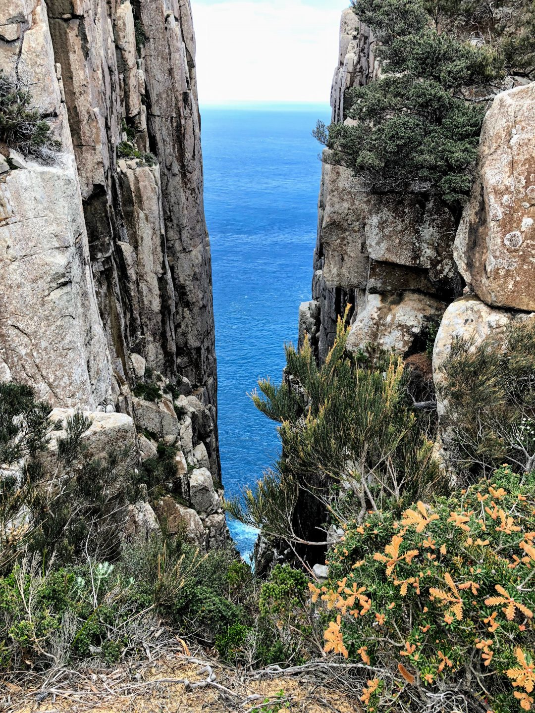 Three Capes Track - Chasm and sea